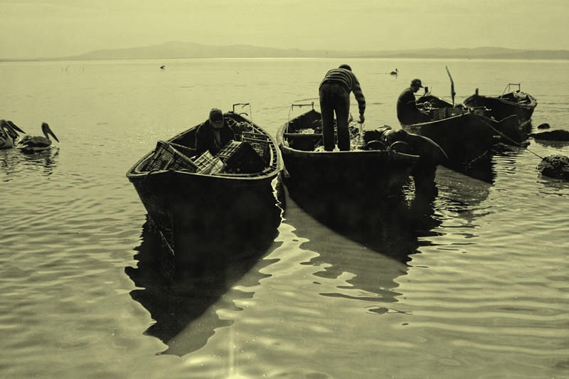 bereketli balıkçıları