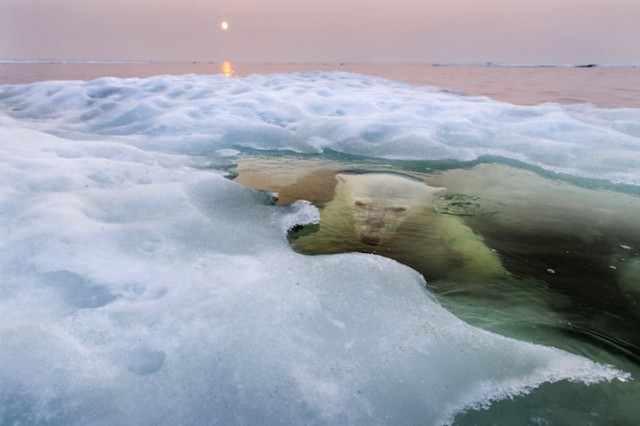 2013 National Geographic Fotoğraf Yarışması'nı Kazanan 12 Fotoğraf