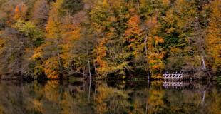 Fotoğrafçılık kursu ve doğa fotoğrafçılarına öneriler
